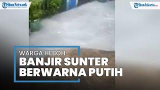 Viral! Warga Dihebohkan Banjir Berwarna Putih seperti Susu di Sunter Jaya Jakarta