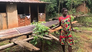 FAMILY ABANDON THEIR 7 MONTHS PREGN@NT DAUGHTER IN DEEP FOREST OVER ALLEGED WITCHCRAFT