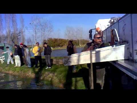 La pesca su Volga laprile di video di regione di Astrakan