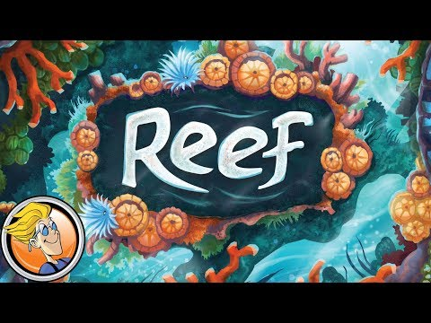 Reef overview and dissection — Fun and Board Games with WEM