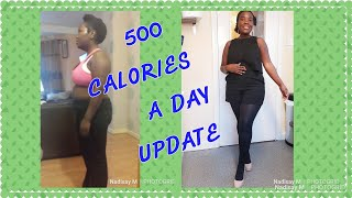 500 CALORIES A DAY DIET / DAILY UPDATES / 5 DAYS