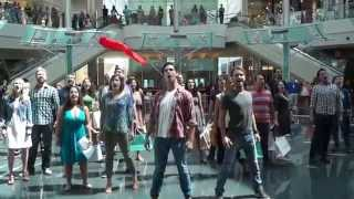 Download Youtube: Les Misérables Flash Mob - Orlando Shakespeare Theater