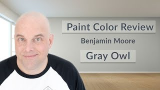 Benjamin Moore Gray Owl Color Review