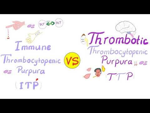 thrombocytopenia visszérrel