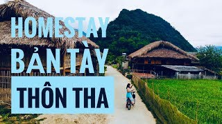 LÀNG TÀY HOMESTAY  ở THÔN THA Trên Cả TUYỆT VỜI Ngay Cạnh TP. Hà Giang