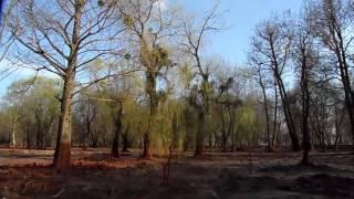 preview picture of video 'Devecser Kastélypark fél évvel az iszapkatasztrófa után HD'