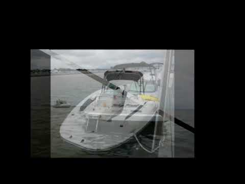 Sea Ray 300 Sundeck video
