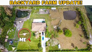 ALL My BackYard Projects UPDATE + FEEDING FARM ANIMALS!!