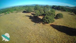 Perseguindo a Reptile S800 - Drone X6 - FPV Galicia