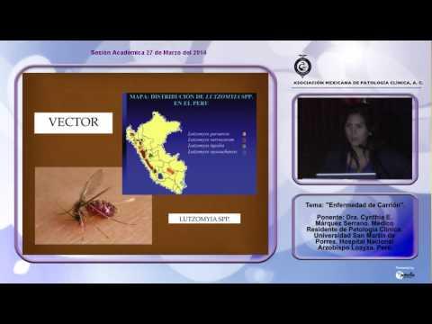 El tratamiento de la psoriasis en kitaya