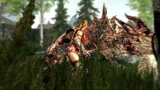 Skyrim-Summertime Mod -7- Dragonslayer