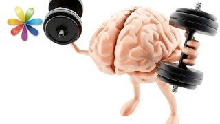 Зарядка для мозгов: как развить логику и скорость мышления? – Все буде добре. Выпуск 669 от 14.09.15