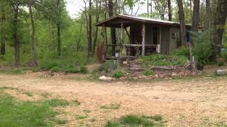 Our Permaculture homestead