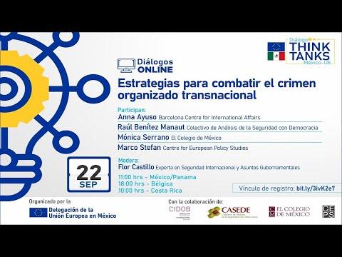 Webinar: Estrategias para combatir el crimen organizado transnacional
