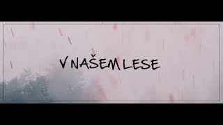 Video Band-a-SKA  -  V Našem lese (Official Lyric Video)