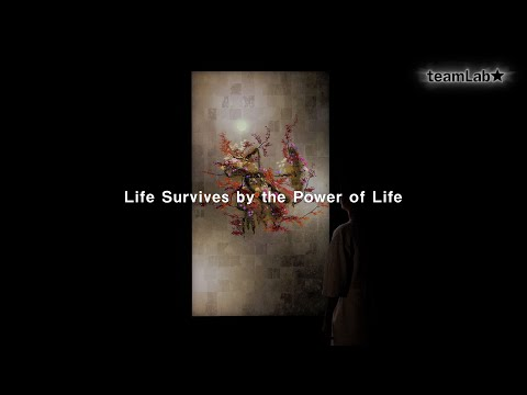 Life Survives by the Power of Life