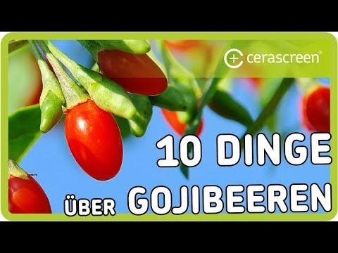 Sind Gojibeeren wirklich so gesund   Was kann das Superfood   10 Dinge über Goji