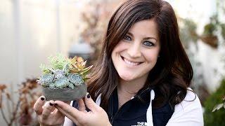How To Make A Mini Fairy Garden (Full Version)
