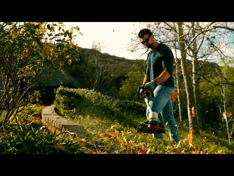 PowerPlex 40V Max* 14-inch Brushless DC String Trimmer Teaser