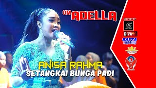 Download lagu Anisa Rahma Setangkai Bunga Padi Mp3