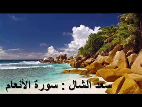006 - الأنعام