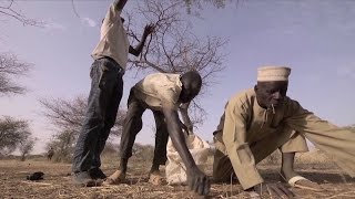 """UN agricultural development chief: """"What feeds people is action on the ground"""""""