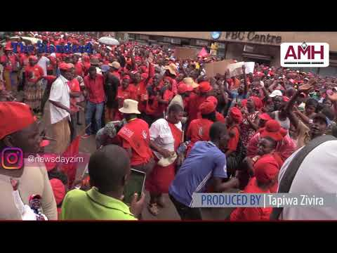Kongonya for Tsvangirai at Harvest Hse