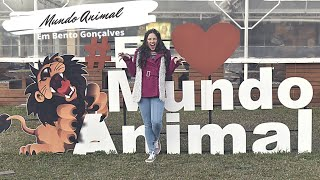 Top 10 lanchonetes Bento Gonçalves- Mundo Animal