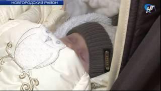В поселке Панковка состоялась торжественная регистрация 1000-го новорожденного Новгородской области