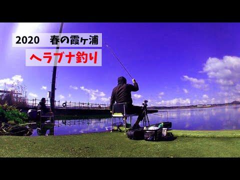 霞ヶ浦で春のヘラブナ釣り クルージャン グルテン 底釣り