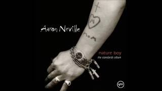 In The Still of the Night - Aaron Neville