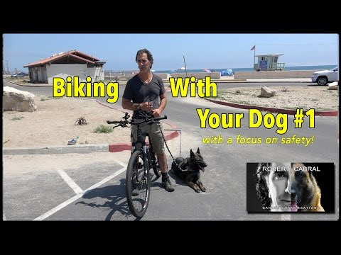 "Biking With Your Dog - The ""How To Video"" - Dog Training And Safety"