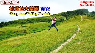 [Travel in Taiwan Guide] Famous spot Taoyuan Valley Prairie, the vast expanse of grassland.