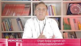Organ Bağışı Yapmak İçin Nereye Başvurulmalıdır?