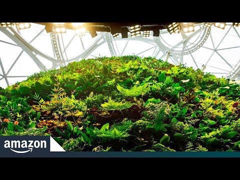 Amazon Spheres: groen kantoor in overtreffende trap