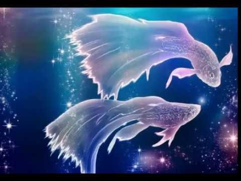 Гороскоп для тигров рыб на 2017 год от тамары глоба