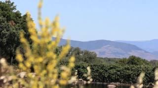 Video del alojamiento Casa Rural El Olivo