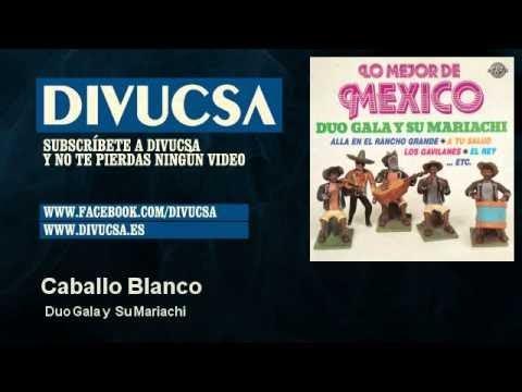 Duo Gala y Su Mariachi - Caballo Blanco - Divucsa