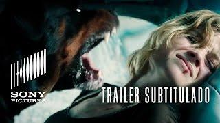 NO RESPIRES (Don't Breathe)   Trailer subtitulado HD