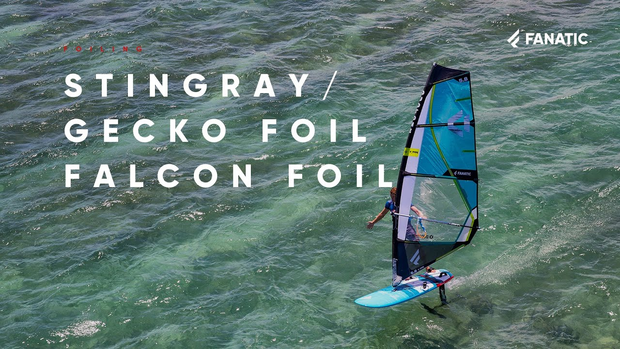 Fanatic Stingray, Gecko Foil & Falcon Foil 2020