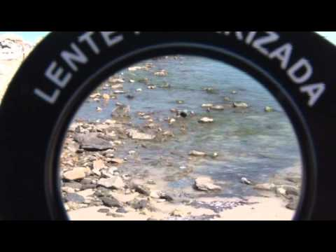 f3f5f3a45ab8c Óculos De Pesca Polarizado Saint Plus Cannon - Green - R  173,90 em ...