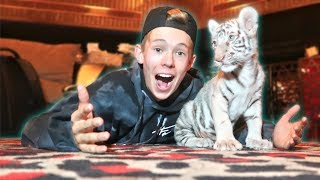 SNEAKING INTO A PRIVATE ZOO!