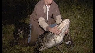 Risk Takers - 102 - Alligator Trappers