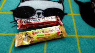 У Макса 1,37 тыс. подписчиков Маша и Медведь это Candy Nut Жувнём сегодня два батона, шоколад (или типо того) Маша и  Медведь и галимый новодел Candy Nut некая ореховая конфета в  виде шоколада.  Ну Машка и Медведь, шоколадка это