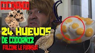 24 HUEVOS DE CODORNIZ | (COCINANDO CON FALCONE LE FRANSUA) | Kholo.pk