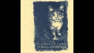 Tindersticks - Drunk Tank (w/ orchestra)