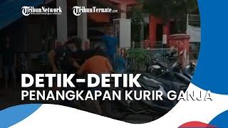 Detik-detik Penangkapan Kurir Ganja di Jember, Polisi Sempat Lepaskan Tembakan Peringatan