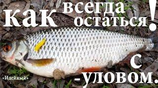 Ловля мирной рыбы на ультралайт