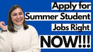 START APPLYING FOR SUMMER JOBS | Success Series | Dimen Diaries