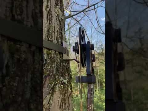 BOW HANGER MOBILE HUNTER COMBO HANGER ON TREE